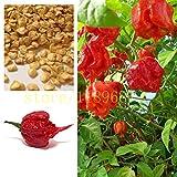 "1bag=200 pcs ghost pepper chili seeds vegetable Fresh Rare Red ""Carolina Reaper"" Pepper Seeds (hot chilli )"