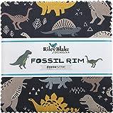 Deena Rutter Fossil Rim 5