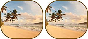 Custom Accessories Auto Expressions 804242 Sun Protection Collapsible Sun Shade, Vintage Surf Standard Size
