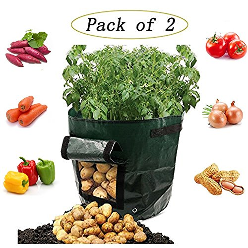 Potato Grow Bags,2 Pcs Garden Vegetables Planter Bags Cultivation with Flap and Handles,Potato Pots for Vegetables, Fruit, Carrot, Tomato, Onion,7 Gallon by Binen