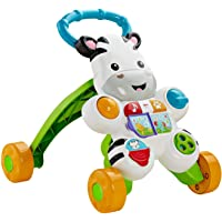 Fisher-Price Learn with Me Zebra Walker FPL37