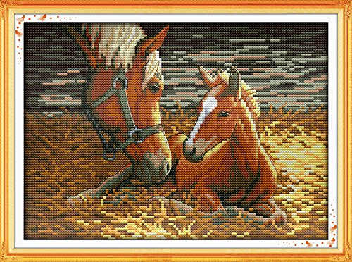 Cross Stitch Embroidery Starter Kit including 14 Count 11