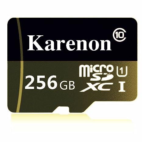 Karenon - Tarjeta de Memoria Micro SD SDXC de 256 GB (Clase ...