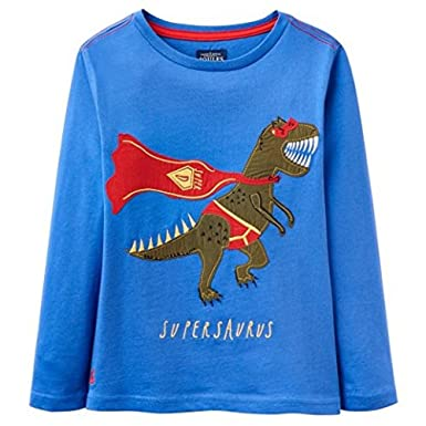 d31bdf1afdc4f Image Unavailable. Image not available for. Color  Joules Long Sleeved  Applique Tee ...