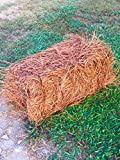 USA Pine Straw - Premium Pine Needle Mulch - Covers 65 Sqft