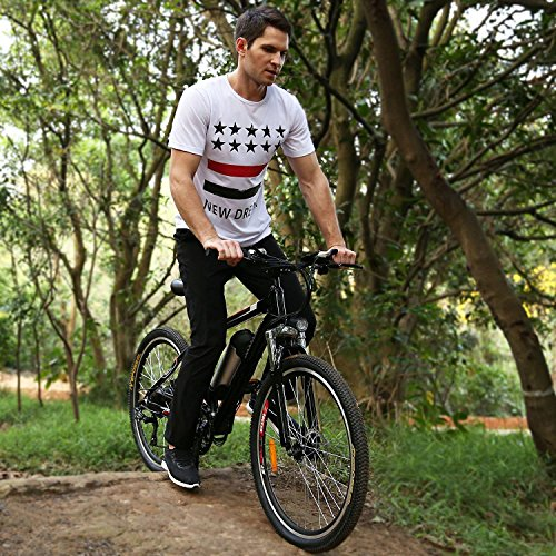 Fly High Fat Seat (Anbeaut New Electric Bike with Lithium Battery Electric Mountain Bicycle with Shimano 26 Speeds Fat Tire Suspension Fork)