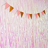 Sumind 2 Pieces Metallic Foil Curtain Black Foil Fringe Shiny Tinsel Fringe Curtain for Christmas Wedding Photo Backdrop (Transparent Metallic, 2 by 1 Meter)