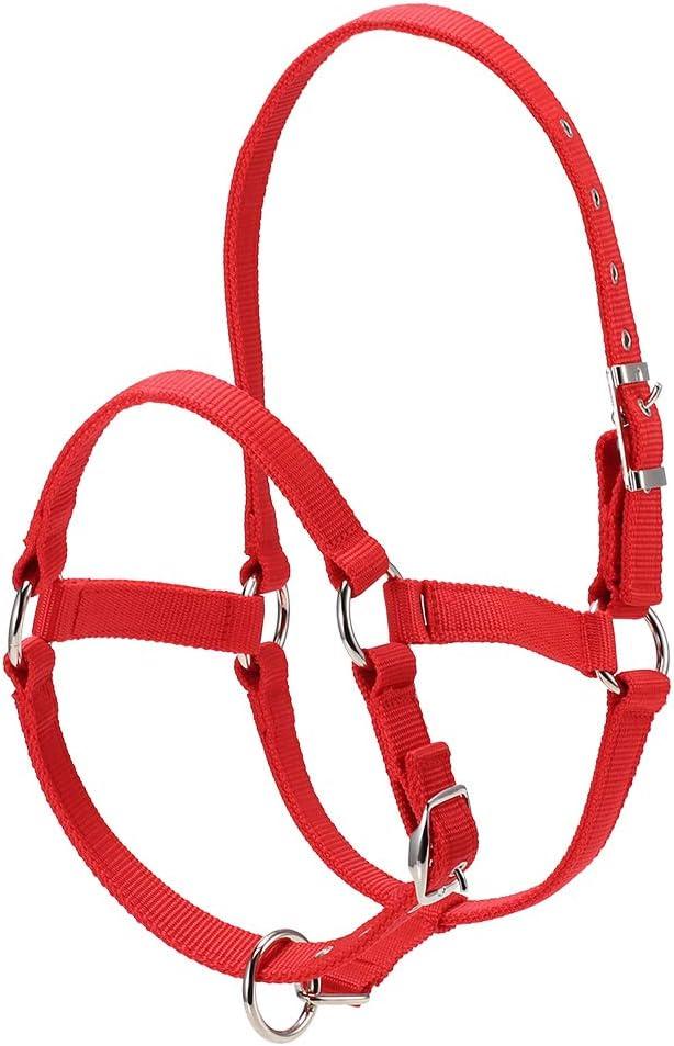 Explopur Cabestro Cabeza de Caballo - Collar de Cabeza de Caballo Engrosado de 6 Mm Cabezal de Seguridad Ajustable Brida de Cabeza