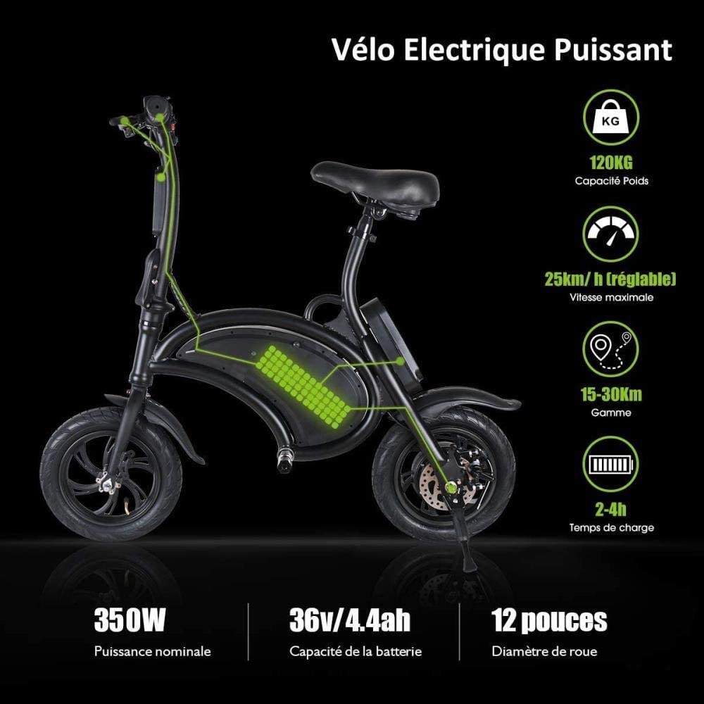 Woodtree Windgoo Bicicleta eléctrica, Foldablke 12 Pulgadas 36V E-Bici con 6.0Ah batería de Litio, Ciudad de Bicicletas MAX de Velocidad 25 km/h, Freno de Disco, Nombre de Color: 12 Pulgadas-Negro