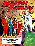 The Marvel Family #1