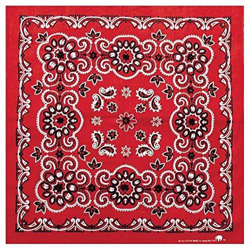 Carolina Manufacturing Texas Paisley Bandana Red