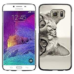 Gato curioso Gatito lindo de Pelo Corto Negro - Metal de aluminio y de plástico duro Caja del teléfono - Negro - Samsung Galaxy S6