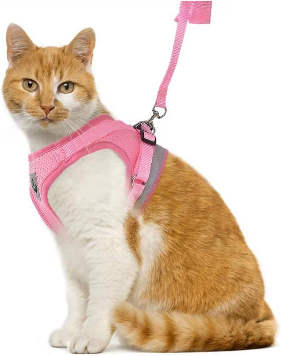 Escape Proof Cat Harnesses-Adjustable Reflective Soft Mesh Corduroy Small Dog Harnesses-Best Pet Supplies GAUTERF Kitten and Puppy Universal Harness with Leash Set