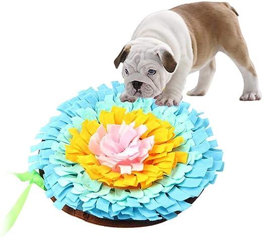 succeedw Almohadilla para olfatear Perros Almohadilla para olfatear Mascotas Manta para Mascotas Alfombra de Entrenamiento para Perros Manta para Mascotas: Amazon.es: Hogar