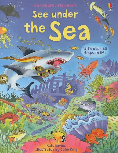 See Under the Sea (Usborne Flap Book)