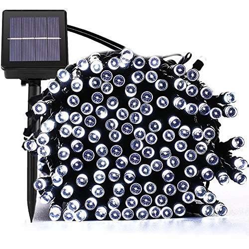 solar string lights (200 mini led or 30 globe led white?