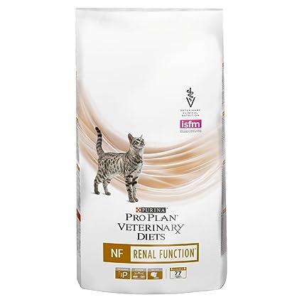 Proplan dieta para gato Renal: Amazon.es: Productos para ...