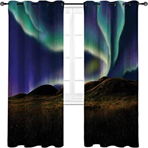 """HouseLookHome Kitchen Curtains Alaska Privacy Protecting Window Drapery Alaskan Meadows in The Night with Aurora Borealis Natural Beauties of The North 2 Grommet Top Curtain Panels,42"""" W x 45"""" L"""