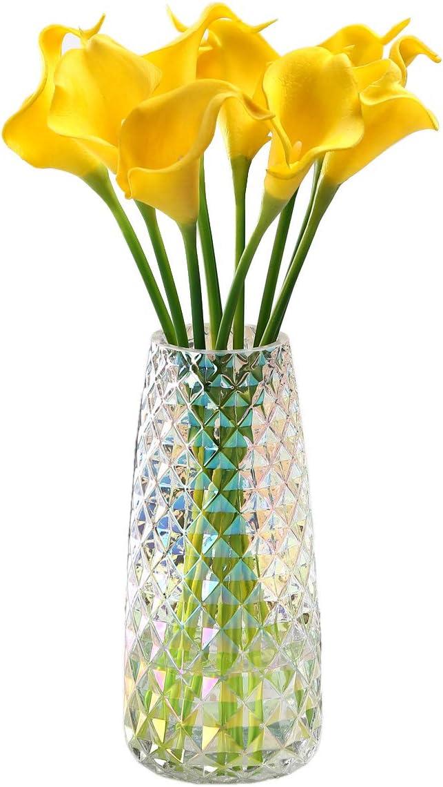 Fantastic Ryan Decorative Glass Vase Crystal Clear Modern Flower Decor Vase for Home Office Table Shelf (Crystal Irised)