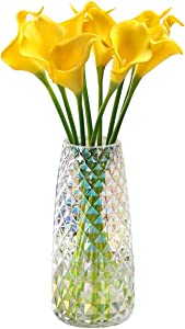 Fantastic Ryan Decorative Glass Vase Crystal Clear Modern Flower Decor Vase for Home Office Table Shelf (Crystal Irised)