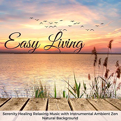 Amazon com: Simple Life (Serenity Music): Zen Music Garden: MP3