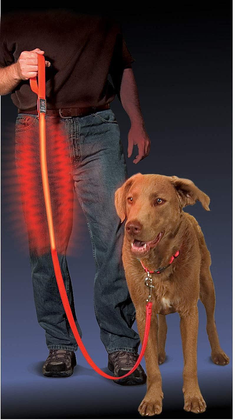 NITEIZE Led Dog Leash cane che cammina rosso