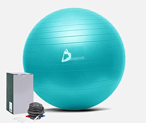 WlyHome Exercise Ball 55 75Cm EXTRA THICK Yoga Chaise De