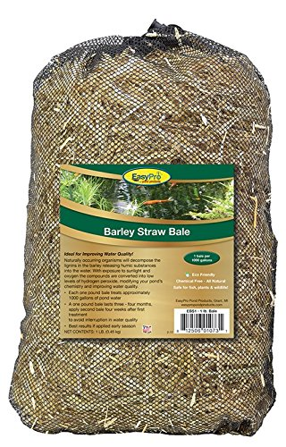 EasyPro EBS1 Barley Straw Bale for Ponds and Waterfalls, 1-Pound