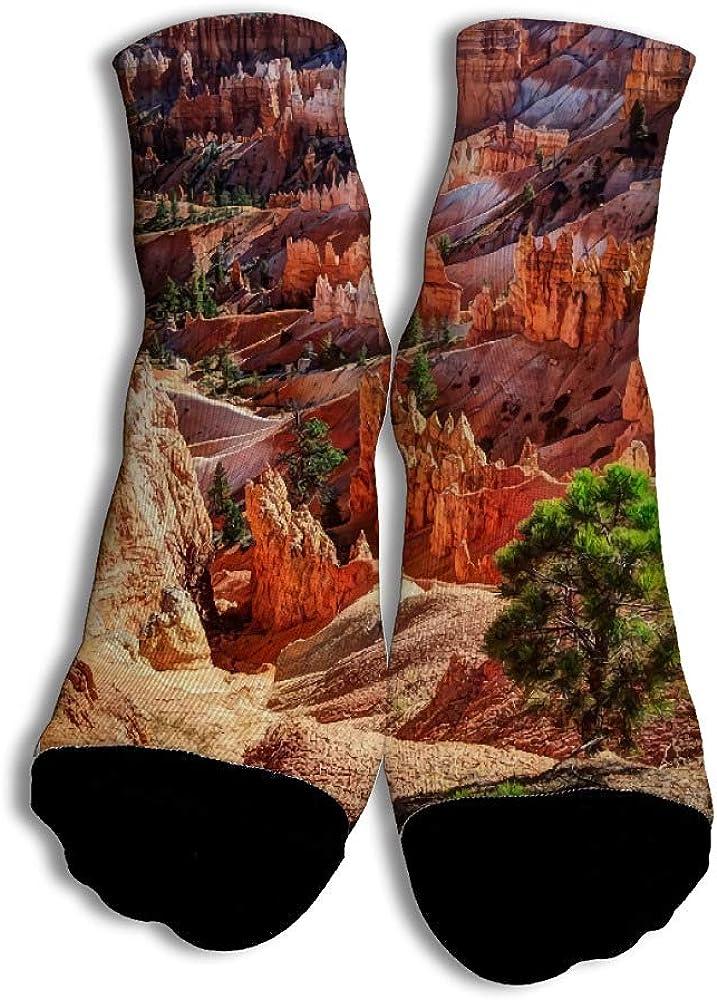 VenenoDulce Rocky Mountain Algodón Calcetines únicos de corte bajo ...
