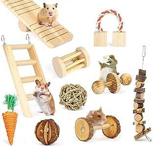 Dyyicun12 Juguete para Masticar Loro para pájaro, 10 Piezas de Madera de Zanahoria, Escalera, cobaya, Conejo, Chinchilla, mordedor, Juguetes, Regalo: Amazon.es: Productos para mascotas