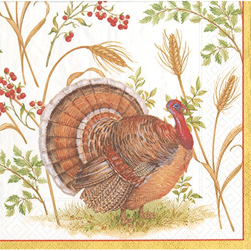 Entertaining with Caspari Golden Harvest Luncheon Napkins (20 Pack), Brown