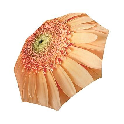 Amazon.com: interestprint girasol resistente al viento ...