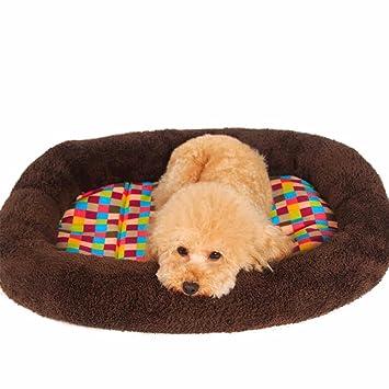 Sofá de espuma de memoria ortopédica de lujo Cama para perro de salón, pequeña, marrón (Size : M80*62 * 5cm): Amazon.es: Coche y moto