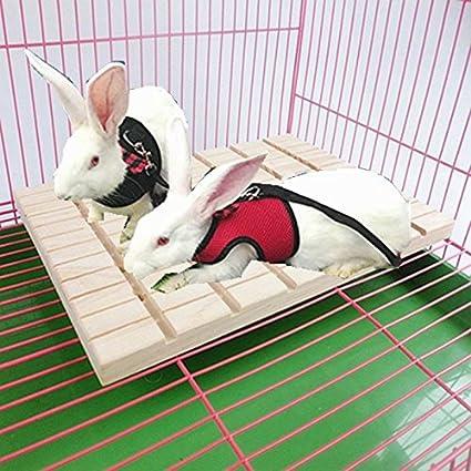 De Almohadilla Pies Juguete Chinchilla Para Animales Hypeety 0Nwm8Oyvn