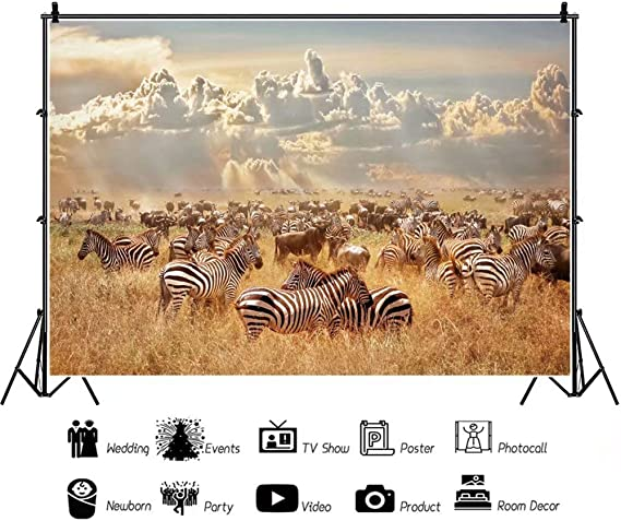 7x10 FT Africa Vinyl Photography Background Backdrops,Zebras in Savannah Desert Waterhole on Hot Day Africa Safari Adventure Land Print Background Newborn Baby Portrait Photo Studio Photobooth Props