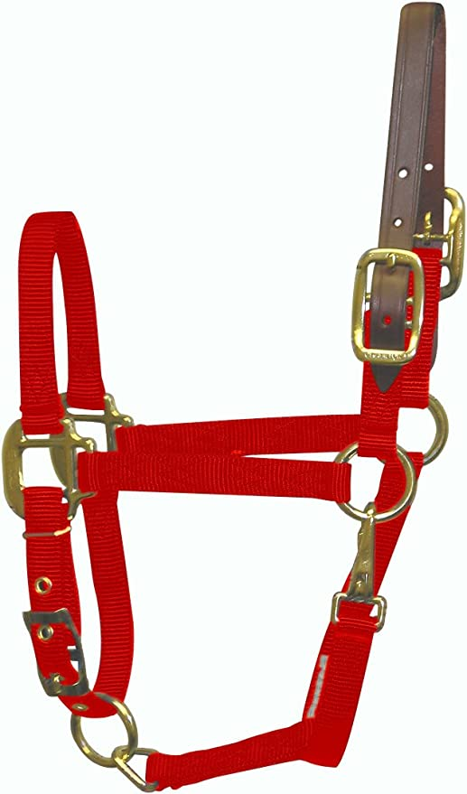 Hamilton Nylon Adjustable Quality Horse Halter with Snap