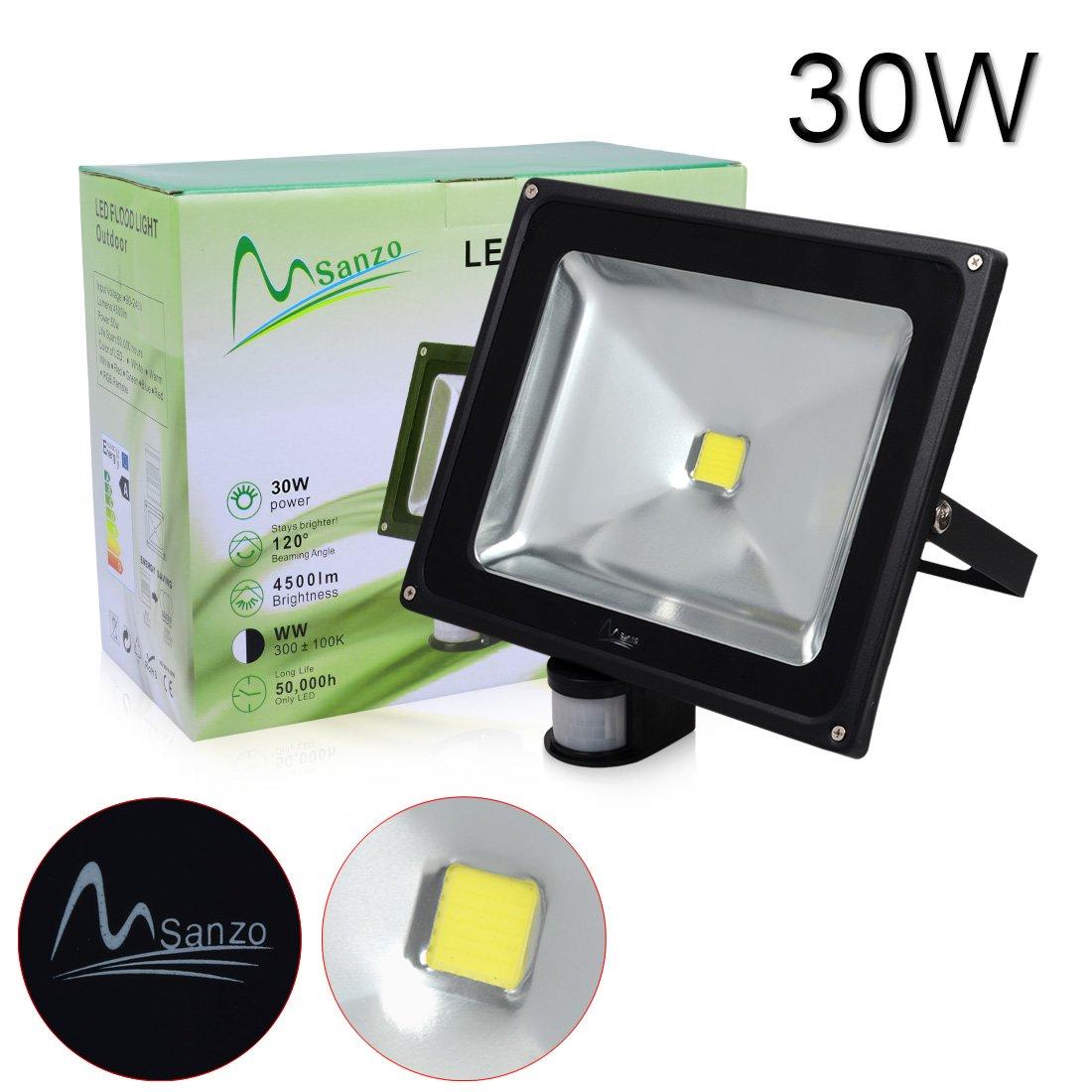 Porpora 30W LED Security Flood Light (1 pack) Ideal for outdoor lighting such as Parking lot lighting, Construction building, Advertisement billboard, Landscape