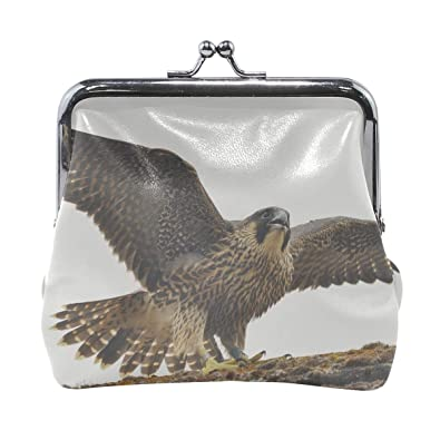 Amazon.com: Rh Studio Monedero Peregrine Falcon Pájaro ...