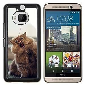 Be-Star Único Patrón Plástico Duro Fundas Cover Cubre Hard Case Cover Para HTC One M9+ / M9 Plus (Not M9) ( Carino Furry Fluffy Cat )