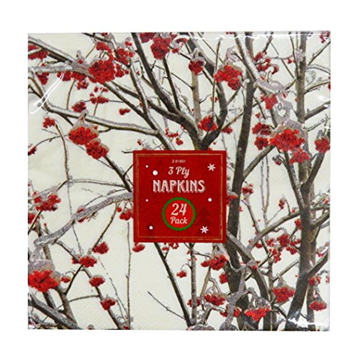 - Christmas Printed Paper 3 ply Napkins, Blossom, Pack of 24