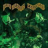 Feathers by Dead Meadow (2005-02-21)