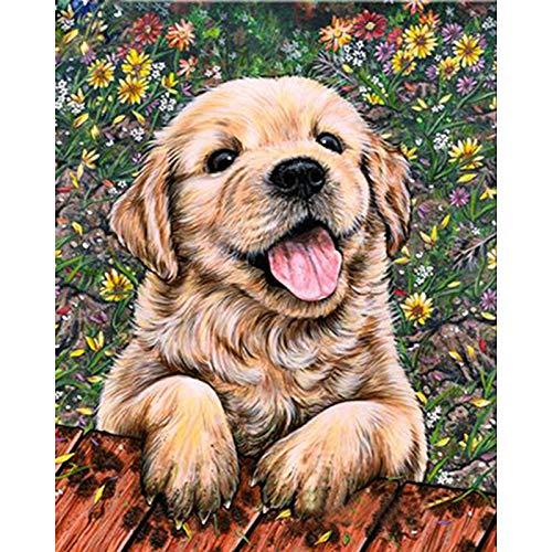Diy 5D Diamond Painting By Number Kit, Full Diamond Golden Retriever Dog?Rhinestone Embroidery Cross Stitch Arts Craft For Canvas Wall Decor(Frameless)