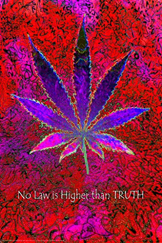 Studio B No Law Higher Than Truth Neon NonFlocked Blacklight Poster 24x36 inch]()
