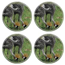 MSD Round Coasters IMAGE 35315966 Grey Crown Crane Mural The cement painting concept