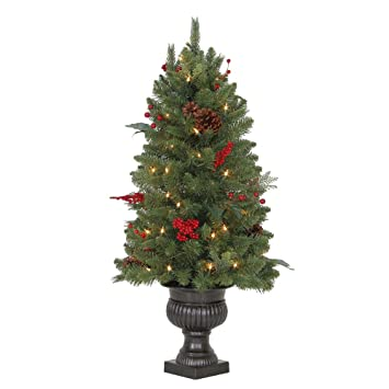 Image Unavailable. Image not available for. Color: Martha Stewart Living 3  ft. Pre-Lit Winslow Fir Potted Artificial Christmas Tree with - Amazon.com: Martha Stewart Living 3 Ft. Pre-Lit Winslow Fir Potted