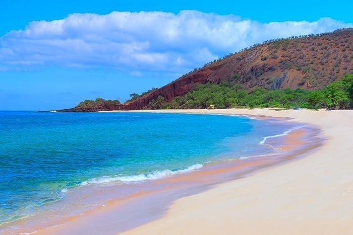 Amazon Com Tropical Beach Decor Hawaiian Art Makena