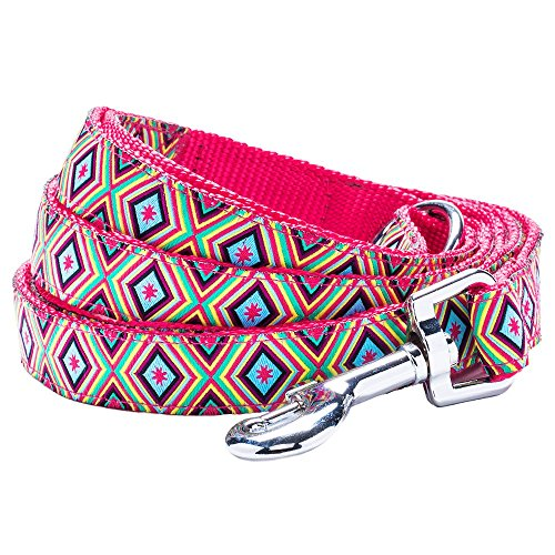 "Blueberry Pet 4 Patterns Durable African Tribes Inspired Colorful Geometry Dog Leash 5 ft x 3/4"" in Warm Shades, Medium, Leashes for Dogs"