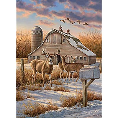 Cobble Hill Rural Route Jigsaw Puzzle (1000 Piece): Toys & Games