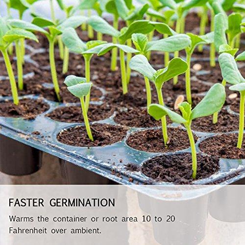 Growneer 10'' x 20'' Waterproof Seedling Heat Mat 7.5'' Dome Germination Station Combo Kit by GROWNEER (Image #6)