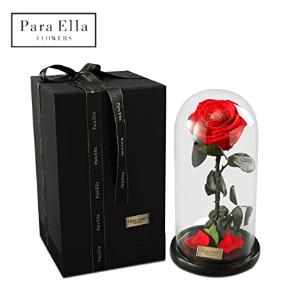 422d763f0569 Para Ella Preserved Fresh Rose Flower Head Covered by Glass Dome as Gifts  for Mothers